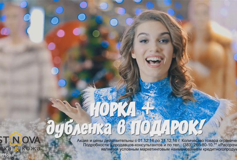 Сеть магазинов «Истнова», «Снегурки»